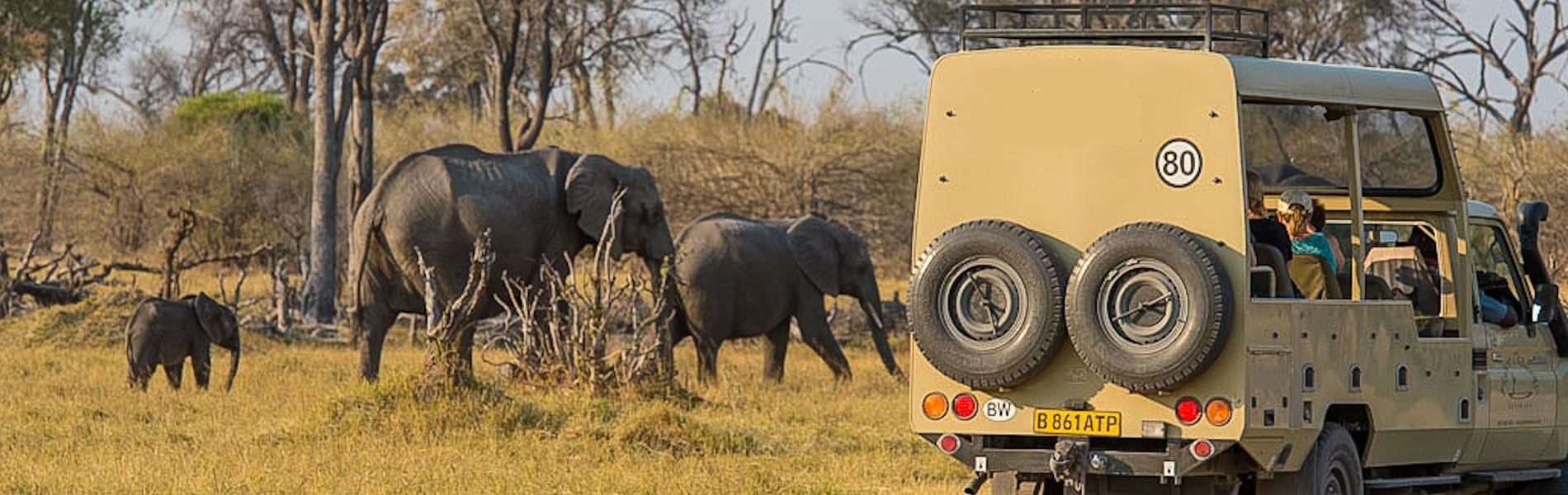 BT14 vehicle elephants