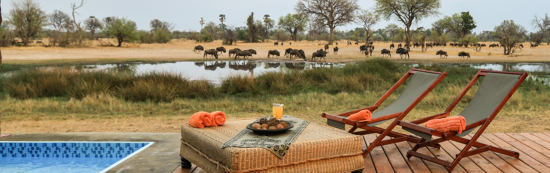 fly-in lodge safari Zimbabwe