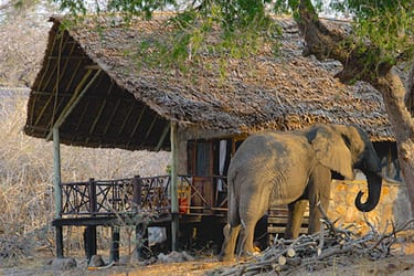 Ruaha River lodge, Ruaha NP ***+
